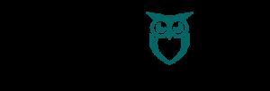 digital-marketing-lanzarote-geek-owl-sports-pr-web-design534x182-GREEN